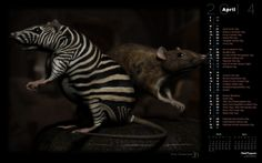World Rat Day (Rendered)