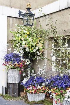 Spring at Banqueting House