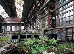 Abandoned chemical factory near La Louviere in Belgium