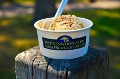 Follow This Trail To Some Of The Best Ice Cream In Connecticut Best Diner, Handmade Ice Cream, Best Ice Cream, Sunflower Fields, Baking Ingredients, Connecticut, Cookie Dough, Sweet Tooth, Road Trip