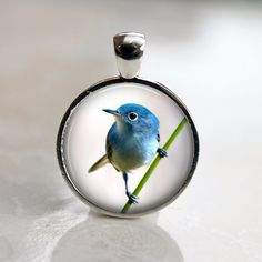 Tiny Blue Bird   Round Pendant in Silver Bezel  25mm by Analiese, $8.50