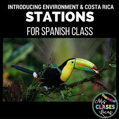 Cultural Stations: Medio Ambiente y Costa Rica - For Spanish class Spanish 1, Spanish Lessons, How To Speak Spanish, Spanish Activities, Teaching Activities, Spanish Classroom, Teaching Spanish, Costa Rica, Earth Day Information