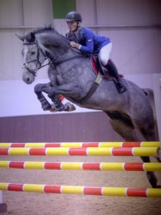 Love the way this horse jumps!