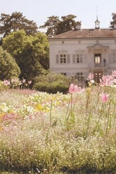 This house is stunning and having a meadow of wildflowers out front is amazing! It looks so beautiful, who wouldn't want to live here, how peaceful. Spring Aesthetic, Nature Aesthetic, Aesthetic Photo, Aesthetic Pictures, Photography Aesthetic, Flower Aesthetic, Merian, Versailles, Pretty Pictures