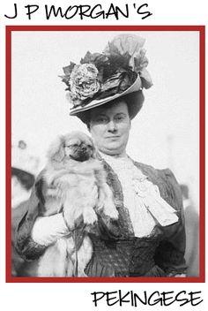 Mrs J.P. Morgan, Peke survived the Titanic