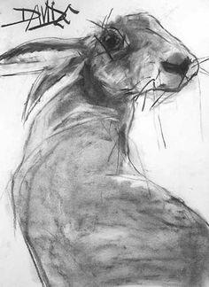 cute rabbit bunny illustration | Valerie Davide