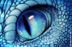 """The Dragon peered closely at him, his gaze never wavering, a flicker of indecision behind the veil of aggression."" ~The Silver One (Saphira by ~Gooberter on deviantART) Dragon Bleu, Blue Dragon, Snow Dragon, Dragon Face, Fantasy Creatures, Mythical Creatures, Photo Dragon, Dragon Eye Drawing, Drawing Eyes"