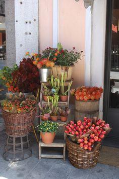 x fleuriste Milan ITALIE ✫ ✫ ✫ ✫ ♥ ❖❣❖✿ღ✿ ॐ ☀️☀️☀️ ✿⊱✦★ ♥ ♡༺✿ ☾♡ ♥ ♫ La-la-la Bonne vie ♪ ♥❀ ♢♦ ♡ ❊ ** Have a Nice Day! ** ❊ ღ‿ ❀♥ ~ Su 04th Oct 2015 ~ ~ ❤♡༻ ☆༺❀ .•` ✿⊱ ♡༻ ღ☀ᴀ ρᴇᴀcᴇғυʟ ρᴀʀᴀᴅısᴇ¸.•` ✿⊱╮