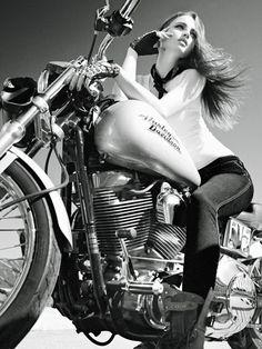 Harley Davidson—Vincent Lions Photography