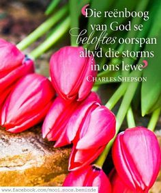 Inspirational Qoutes, Motivational Quotes, Woman Quotes, Me Quotes, Printable Quotes, Afrikaans, Note To Self, Christian Quotes, Cooking Recipes