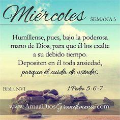 SEMANA 5-Miércoles #AmaaDiosGrandemente #1y2Pedro #servicioaDios