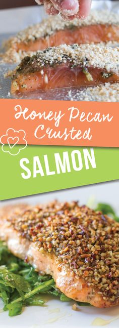 Honey Pecan Crusted Salmon | Love Love Love this simple and easy approach to salmon that combines delicious sweet and savory flavors with honey and pesto. Yum | meikoandthedish.com