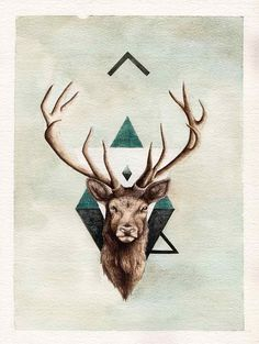 Vintage science journal and geometry inspired animals portraits by Peter…