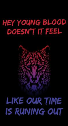 Fall Out Boy - Phoenix