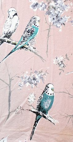 Vintage budgie fabric - repinning for no other reason than I love budgies