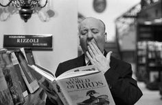 """lottereinigerforever: """" Alfred Hitchcock yawning over book of birds at the rizzoli bookstore on New York's fifth © Otto Ludwig Bettmann """" Alfred Hitchcock, Hitchcock Film, Actrices Blondes, People Reading, Celebrities Reading, Tippi Hedren, Speed Reading, Silent Film, Bruce Willis"""