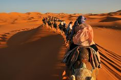 #MoroccoCamelTrekking takes you straight into the Moroccan Sahara region where there is nothing around you. Know more @ http://www.camelsafari.net/