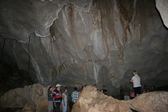 Capricorn Caves, Rockhampton: See 267 reviews, articles, and 84 photos of Capricorn Caves, ranked No.1 on TripAdvisor among 28 attractions in Rockhampton. Online Tickets, Caves, Trip Advisor, Mount Rushmore, Road Trip, 1, Articles, Australia, Photos
