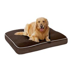 Give your pet a comfortable place to relax or sleep with the Keegan Napper Pet Bed. This luxurious bed features a memory foam padded base for extra cushioning and support. The plush glimmer cover is removable for easy care. Chocolate Color, Chocolate Brown, Cool Dog Beds, Green Bedding, Pet Beds, Soft Colors, Pet Care, Memory Foam
