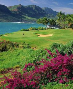 golf course lagoons marriott kauai