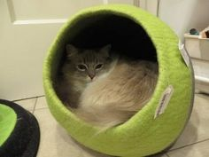 Designer Cat Beds: Lollycadoodle Wool Cat Beds from The Cat Connection -...