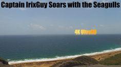 DJI Phantom 3 Captain IrixGuy Soars with the Seagulls