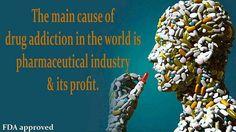 GMO MONSANTO HEALTH 016