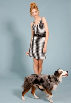 i dont care about the dress, i want that dog.