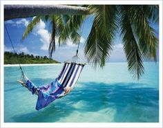 "NAT60013"" Tropical Beach - Hammock Under Tree"" (11 X 14)"
