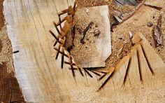 http://sohaconcept.com/ #wood, #handwork, #art