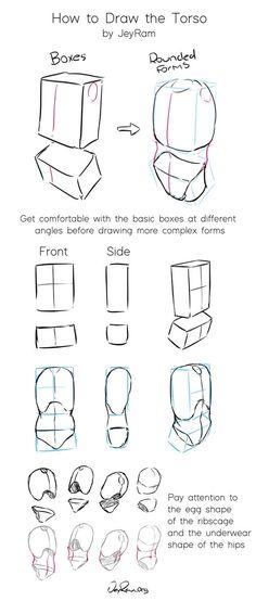 How to Draw the Torso: Step by Step Tutorial + Free Practice Worksheet (Printable) - JeyRam Spiritual Art