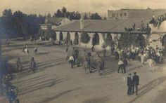 Floto-Sells Circus | Floto-Sells Elephant Stampede 1908 Riverside Cakifornia