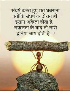 Gita quotes - Never be afraid of Struggle Hindi hindiquotes suvichar ťhoughtoftheday quoteoftheday Chankya Quotes Hindi, Gita Quotes, Prayer Quotes, Wisdom Quotes, Lyric Quotes, Quotations, Morals Quotes, Marathi Quotes, Sucess Quotes