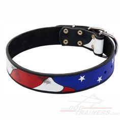 American Pride Collar for my Abby