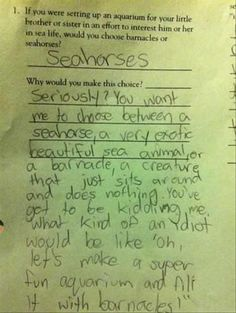 sea horses, funny kid answers
