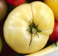 The Great White tomato is a beefsteak type of heirloom tomato that is amazingly… Heirloom Tomato Seeds, Heirloom Tomatoes, Planting Bulbs, Planting Seeds, Planting Vegetables, Vegetable Garden, Veggies, House Plant Delivery, House Plants For Sale