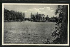 Alte Ansichtskarte: AK Sasbach, Blick auf Mummelsee