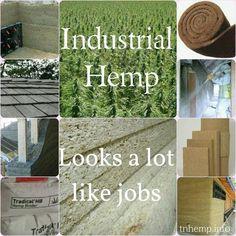 Industrial hemp #auspol