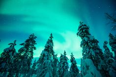 Frozen in Finland – A Travelette Plays Elsa