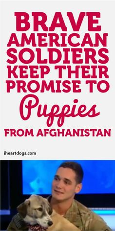 Brave American Soldier Keep Their Promise To Puppies From Afghanistan <3