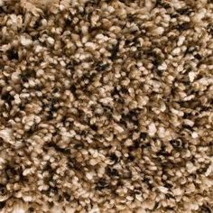 Home Decorators Collection Lake Country - Color Clearlake Oaks 12 ft. Carpet-H5003-7007-1200-AB at The Home Depot. New carpet (replaces living room and hallway)