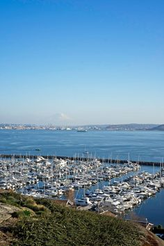 These are the must see water views in Seattle as told by a local. If you love views of water, mountains, and skylines, check out these best Seattle viewpoints. #seattleviewpoints #seattleskyline #pugetsound #seattleparks #seattleparkview #seattlethingstodo Seattle City, West Seattle, Downtown Seattle, Seattle Skyline, Hidden Places, Great Places, Places To See, Seward Park, Lake Union