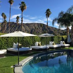 Gaby's Guide to Palm Springs