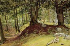Richard Redgrave (1804-1888): Parkhurst Woods, Abinger, Surrey, Victoria & Albert Museum, London