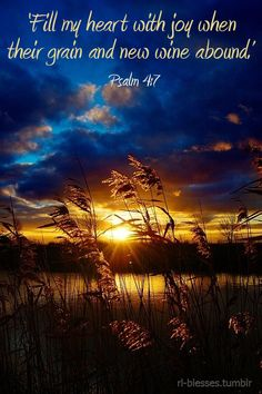 Psalm 4:7 ~ Fill my heart with joy when their grain and new wine abound...