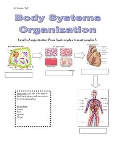 Grade 8 Science Task Cards for Cells, Tissues, Organs and ...