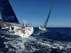 Lorient Horta Solo: La flota gana latitud norte desde las Açores