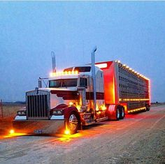 Kenworth W900L with Cattle Transport trailer