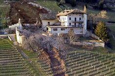 Se det vilde billede: Kæmpe rullesten kværner gennem vingård