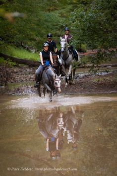 Endurance Horses going through water | ... mountain endurance ride with portraits and fun water crossings 2010